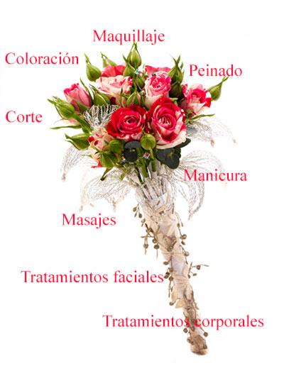 Plan Novia en M. Belén. Desde tratamientos corporales al peinado y maquillaje. Novias en Puerta de Toledo, La Latina,
